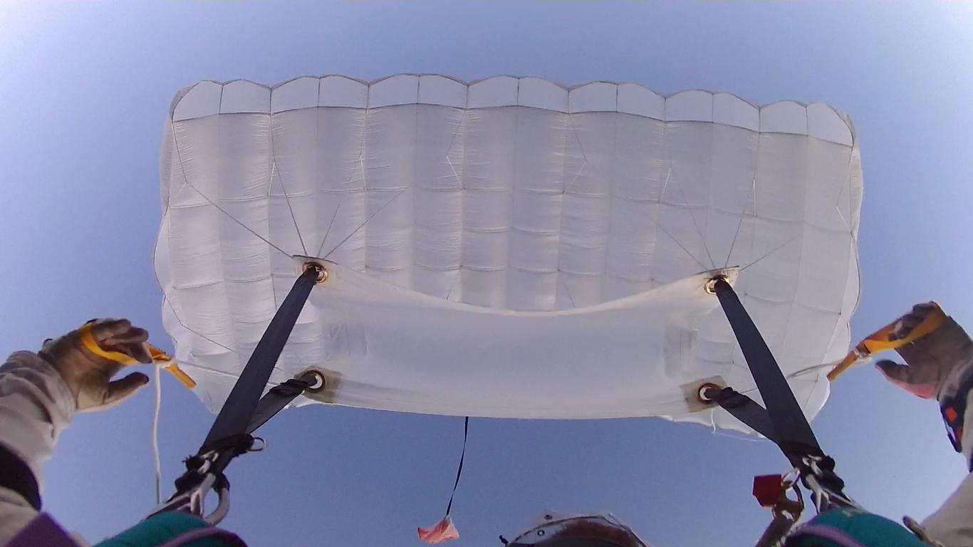 white_canopy.jpg