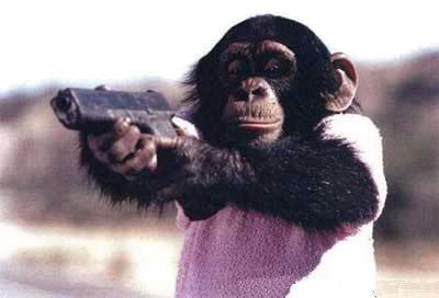 MonkeyLip