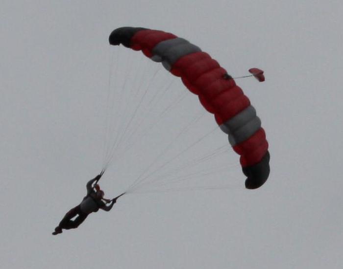 SkyChimp