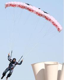 windswooper