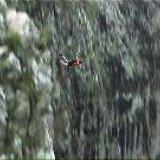 wallman falls