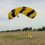 Mac Goshen Landing - King Bee (3)