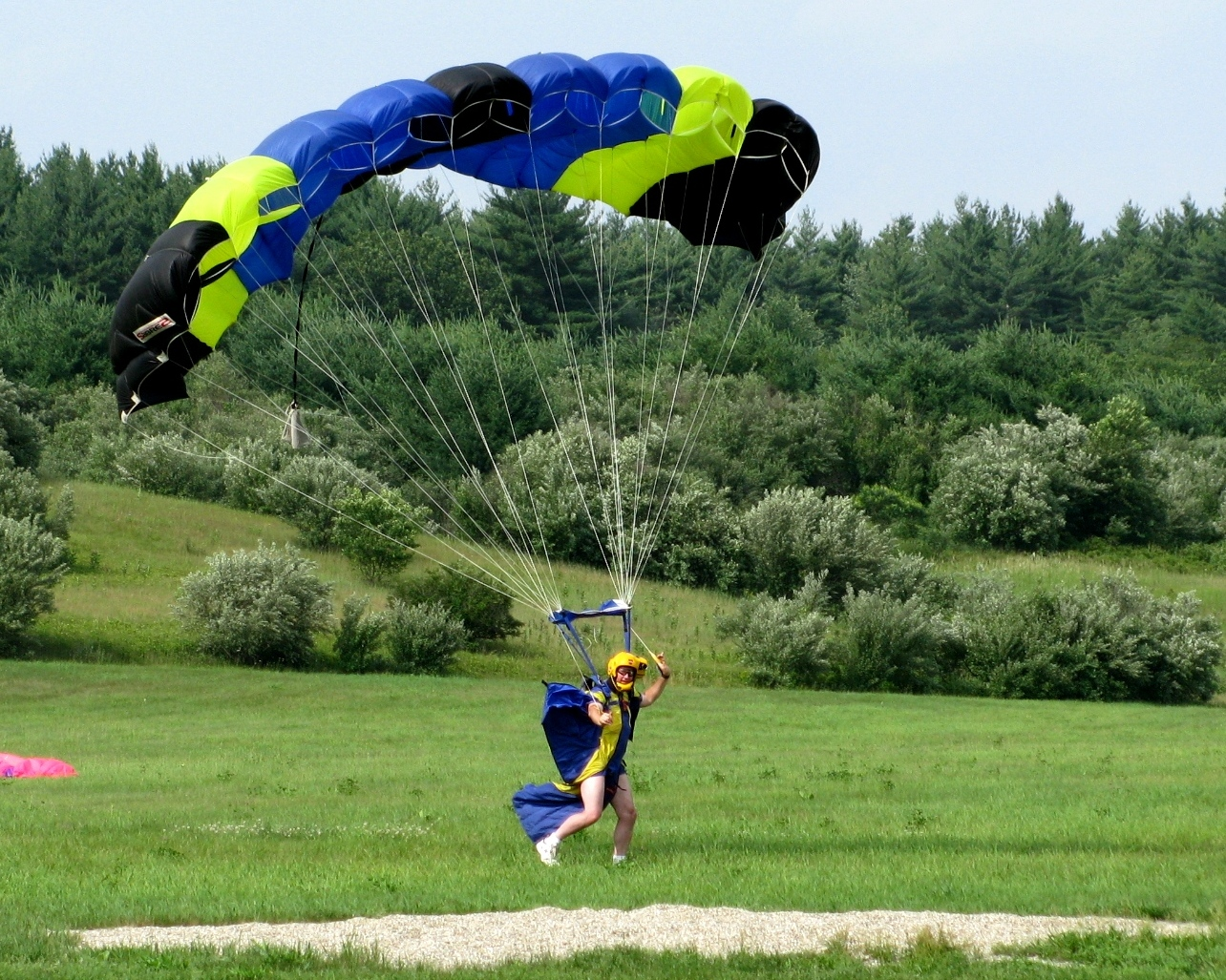 Flock landing - Pepperell