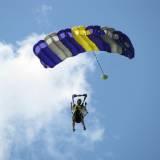 Canopy Flight - Pepperell