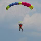 Canopy Flight -Pepperell