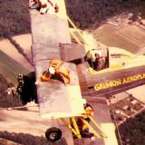 Wing Walkers (from the top)