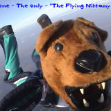 penn state flying nittany lion mascot