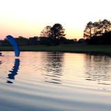 Sunset Swoop