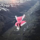 Nov 23 - Pink Zell 296_wm
