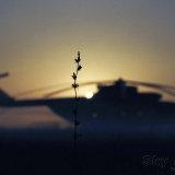 Sunset Chopper